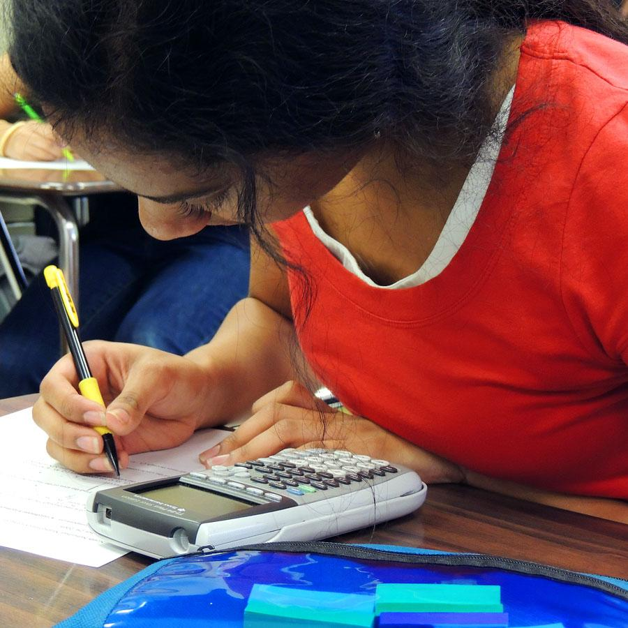 Math team sets goal to make state competition