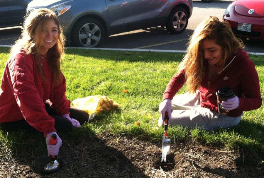 Sophomores Tanya Rasha and Jenna Barakat plant tulips.