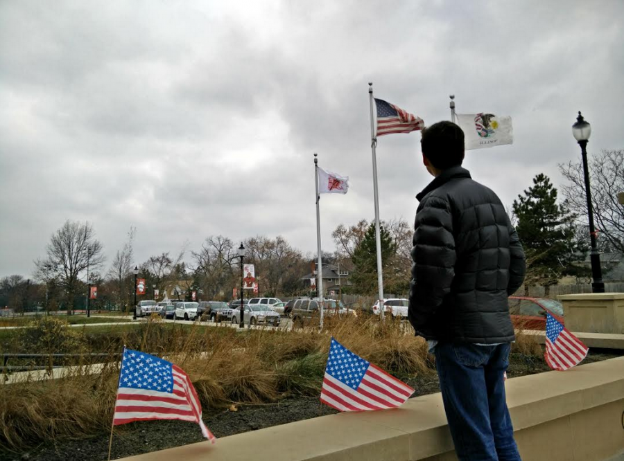 Andrew Coyner, junior, looks at the flags in front of the school on Nov. 11 to honor Veterans Day.