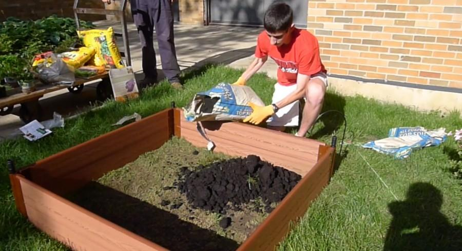 Senior+Josh+Feldman+prepares+soil+for+the+school+garden%2C+a+project+that+took+off+in+May+2014.+
