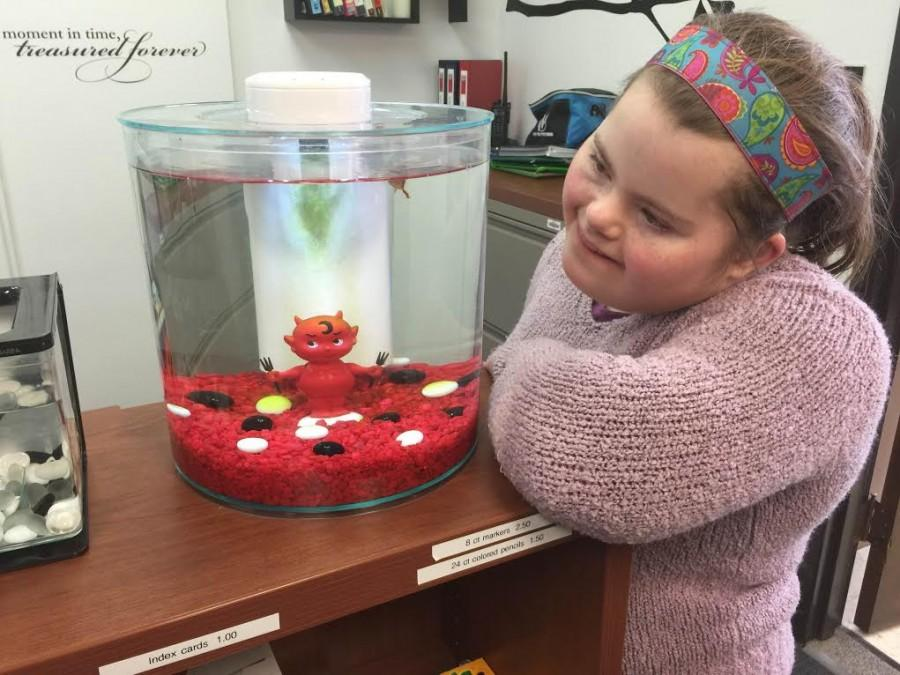 Freshman Carolyn Wagner helps feed the betta fish in the bookstore.