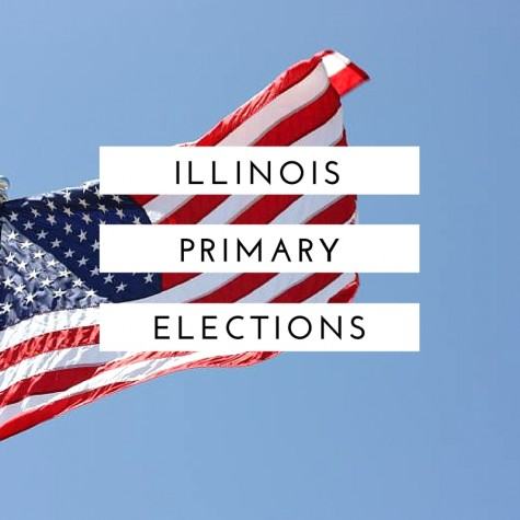 A high schoolers guide to the primary
