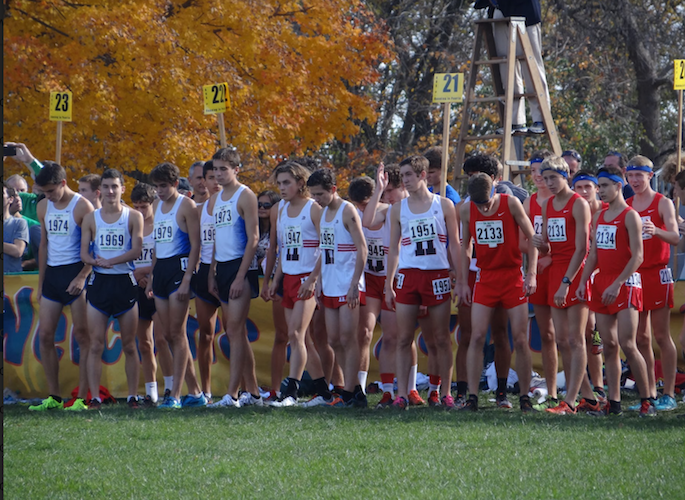 Ethan Planson, senior, lines up with his teammates on the IHSA Cross Country state meet starting line. As a runner I find the stress on athletes is sometimes overwhelming.