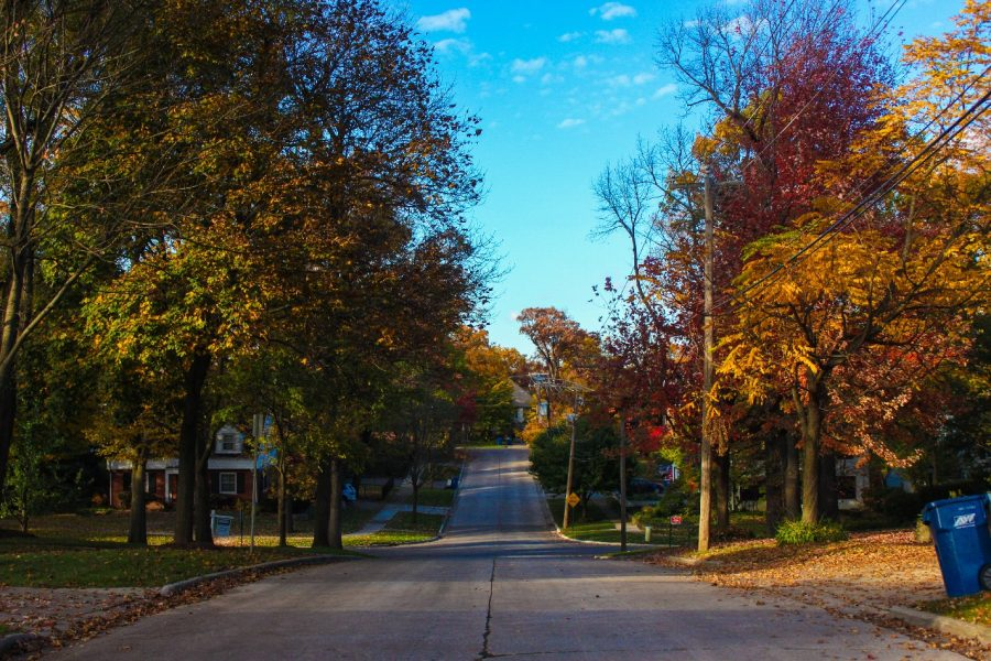 Gallery: Autumn in Hinsdale