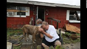 A man reunites with his dog after the traumatic experience for both of them.