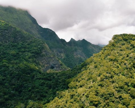 The West Maui Forest Reserve in Hawaii is one of the most popular spring break destinations for Hinsdale Central students in 2018 and previous years.