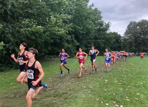 Cross country runners raced against each other at Detweiller Park in Peoria on Sept. 8.