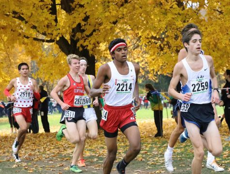Varsity boys cross country place ninth at Palatine