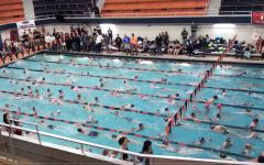 Girls swim and dive traveled to Evanston, Ill. to compete in the IHSA state championship, where they placed 16th overall.