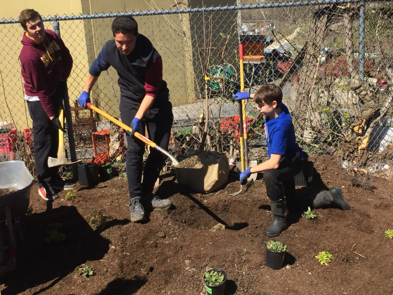 Junior Luke Leddy built a rain garden that would be a part of the Richmond Garden and Apiary in Westmont.