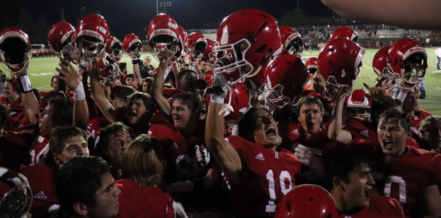 After the win against Naperville Central, the team celebrated with the crowd.
