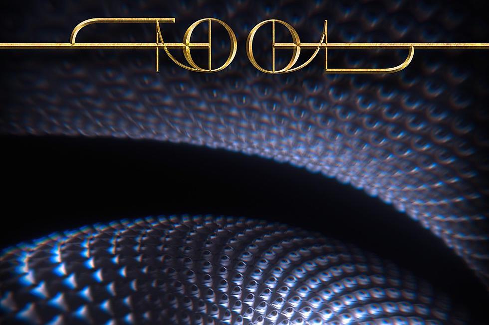 TOOL's long awaited album