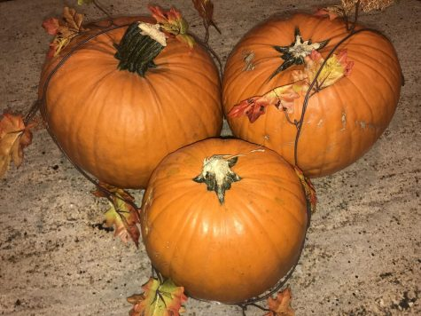 Carved pumpkins are signatures pieces to Halloween, with many doorsteps around neighborhoods decorated with lit pumpkins.
