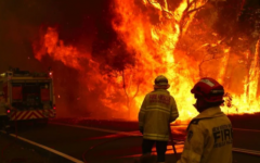 Forest fires ignite climate change discussion