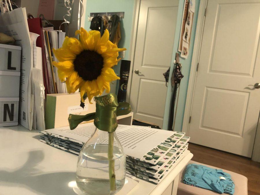 Sunflower in Skylar's Bedroom