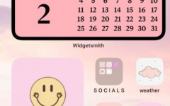 Ashley Menendez, senior, created a pink-themed home screen.