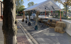 Since March, Clarendon Hills (above) has provided options for outdoor eating in response to the global pandemic.