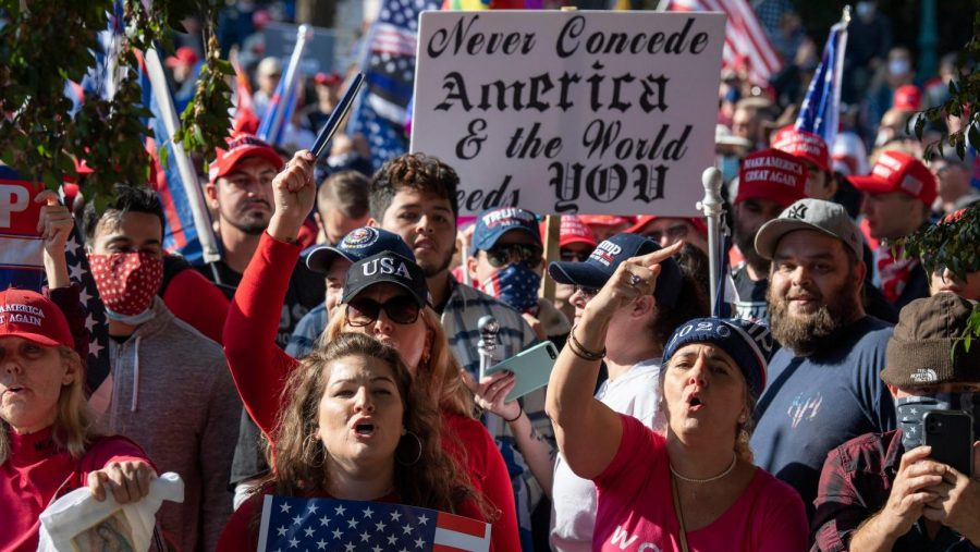 Thousands of Trump Supporters rallied on Nov.14 for the