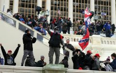 Pro-Trump protesters stormed the Capitol and waved Confederate and Trump 2020 flags as they contested Biden's presidential victory.