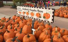 """Goebbert's Farm and Garden Center has provided many with entertainment and fall activities for years. Visit South Barrington, IL, through Oct. 31st, to see their """"Fall Festival."""""""