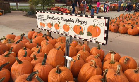 """Goebbert's Farm and Garden Center has provided many with entertainment and fall activities for years. Visit South Barrington, lll, through Oct. 31, to see their """"Fall Festival."""""""